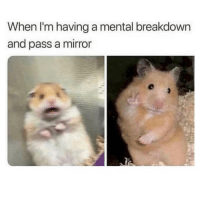 Drunk, Memes, and Mirror: When I'm having a mental breakdown  and pass a mirror Also, when people tell me what I did when I was drunk vs me getting ready to go out for the fourth time this week.
