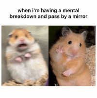 Funny, Twitter, and Mirror: when i'm having a mental  breakdown and pass by a mirror He really throwing the peace sign though 😂 👉🏽 via: ‪stfutony-Twitter