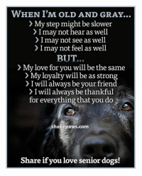 Love your senior dogs!: WHEN I'M OLD AND GRAY...  > My step might be slower  > I may not hear as well  > I may not see as well  > I may not feel as well  BUT...  > My love for you will be the same  My loyalty will be as strong  > I will always be your friend  > I will always be thankful  for everything that you do  shakepaws.com  Share if you love senior dogs! Love your senior dogs!