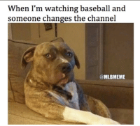 Mlb, Touche, and Ims: When I'm watching baseball and  someone changes the channel  @MLBMEME Never touch a baseball fan's TV