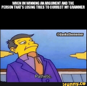 Skinner Pathetic Meme   www.picturesso.com: WHEN IM WINNING ANARGUMENT AND THE  PERSON THATS LOSING TRIES TO CORRECT MY GRAMMER  @danksthememe  Pathetic  funny.ce Skinner Pathetic Meme   www.picturesso.com