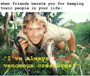 """Dank Memes, Creatures, and Toxic: when iriends berate vou ior keeping  toxic people  ln your liie  """"I 've always loved  venomous creatures! #NeverLearn"""
