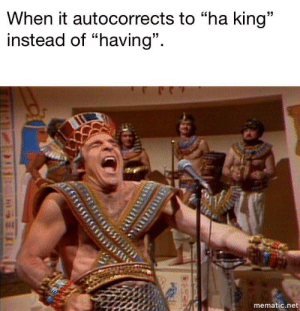 "Autocorrect, Dank, and Memes: When it autocorrects to ""ha king""  instead of ""having""  mematic.net Positive autocorrect by piercedeyeball FOLLOW 4 MORE MEMES."