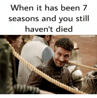 LF dies in S7. Yay or Nay? I'm YAY af. Hope he doesn't get to sit on the throne for even a single sec 💀👋: When it has been 7  seasons and you still  haven't died  QPUREICEANDFIRE LF dies in S7. Yay or Nay? I'm YAY af. Hope he doesn't get to sit on the throne for even a single sec 💀👋