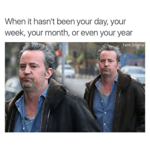 Dank, Memes, and Reddit: When it hasn't been your day, your  week, your month, or even your year  Tank Sinatra I'll be there for youuuu by MetaphysicalBlanket FOLLOW 4 MORE MEMES.