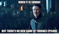 https://t.co/aaeEA0KXKF: WHEN IT ISSUNDA  ThronesMemes  BUT THERE'S NO NEW GAME OF THRONES EPISODE https://t.co/aaeEA0KXKF