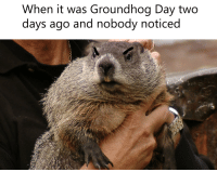 Groundhog Day: When it was Groundhog Day two  days ago and nobody noticed