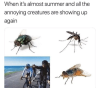 "Summer, All The, and Annoying: When it's almost summer and all the  annoying creatures are showing up  again <p>Possible invest? via /r/MemeEconomy <a href=""https://ift.tt/2s6ZIfP"">https://ift.tt/2s6ZIfP</a></p>"