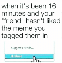 "Lmaoo 😂😂😂😂😂😂 🔥 Follow Us 👉 @latinoswithattitude 🔥 latinosbelike latinasbelike latinoproblems mexicansbelike mexican mexicanproblems hispanicsbelike hispanic hispanicproblems latina latinas latino latinos hispanicsbelike: when it's been 16  minutes and your  ""friend"" hasn't liked  the meme you  tagged them in  Suggest Friends...  Unfriend Lmaoo 😂😂😂😂😂😂 🔥 Follow Us 👉 @latinoswithattitude 🔥 latinosbelike latinasbelike latinoproblems mexicansbelike mexican mexicanproblems hispanicsbelike hispanic hispanicproblems latina latinas latino latinos hispanicsbelike"