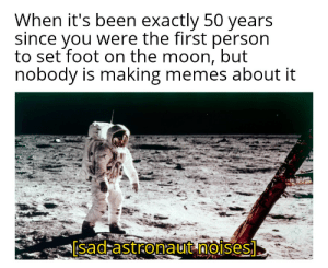 Meme, Memes, and Reddit: When it's been exactly 50 years  since you were the first person  to set foot on the moon, but  nobody is making memes about it  [sad astronaut noises] History meme