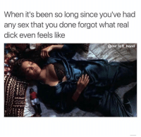 Sex, Dick, and Dank Memes: When it's been so long since you've had  any sex that you done forgot what real  dick even feels like  @mr left hand Only Dildos And Vibrators. 😊😊😊 PictureThis