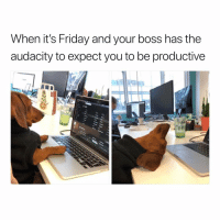 The nerve🙄🙄 fridayvibes tgif hellnah: When it's Friday and your boss has the  audacity to expect you to be productive The nerve🙄🙄 fridayvibes tgif hellnah
