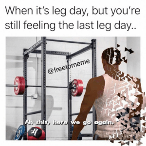 The feels.: When it's leg day, but you're  still feeling the last leg day...  @freetomeme  GUE  @freetomeme  Ah shit, here we go again The feels.