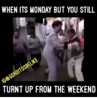 WHEN ITS MONDAY BUT YOU STILL  GoROITOSBELIKE  G TURNT UP FROM THE WEEKEND Happy monday😄😄😄 FOLLOW➡️ @Losmemesnmore Via:@gorditosbelike