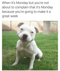 Good morning 😁: When it's Monday but you're not  about to complain that it's Monday  because you're going to make it a  great week  (a LUTALO8 Good morning 😁