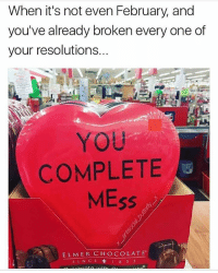 Funny, Memes, and Chocolate: When it's not even February, and  you've already broken every one of  your resolutions.  YOU  COMPLETE  MEss  ELMER CHOCOLATE Follow @memezar for funny memes 😂