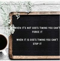 Memes, 🤖, and Force: WHEN IT'S NOT GOD'S TIMING YOU CAN'T  FORCE IT  WHEN IT IS GOD'S TIMING YOU CAN'T  STOP IT Comment amen if you believe. Credit @ashley.morgan.jackson