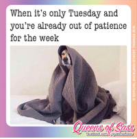 If you need me, I'll be crying in my blanket fort #QueensofSass: When it's only Tuesday and  you're already out of patience  for the week  T facebook.com Laveensotsass If you need me, I'll be crying in my blanket fort #QueensofSass