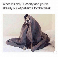 🙇🏻🙇🏻: When it's only Tuesday and you're  already out of patience for the week 🙇🏻🙇🏻