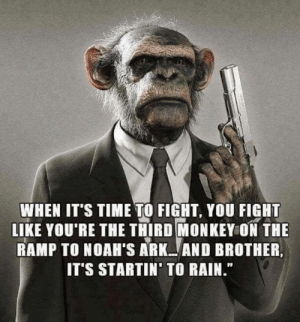 """Memes, Monkey, and Rain: WHEN IT'S TIME TO FIGHT, YOU FIGHT  LIKE YOU'RE THE THIRD MONKEY ON THE  RAMP TO NOAH'S ARK AND BROTHER,  IT'S STARTIN' TO RAIN."""" smells like rain..."""