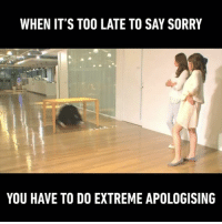 Follow @9gag App📲👉@9gagmobile 👈 - - - 📹 @Livedoornews 9gag sorry breakdance dogeza apologize 謝罪 土下座: WHEN IT'S TOO LATE TO SAY SORRY  YOU HAVE TO DO EXTREME APOLOGISING Follow @9gag App📲👉@9gagmobile 👈 - - - 📹 @Livedoornews 9gag sorry breakdance dogeza apologize 謝罪 土下座