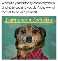 Birthday, Memes, and Singing: When it's your birthday and everyone is  singing to you and you don't know what  the hell to do with yourself  I am uncomfortable