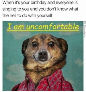 Birthday, Dank, and Memes: When it's your birthday and everyone is  singing to you and you don't know what  the hell to do with yourself  I am uncomfortable  IG: @tank.sinatra Everytime 😕 by THEAFEW FOLLOW 4 MORE MEMES.