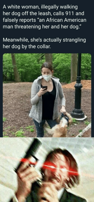 When John Wick finds out, (NYC Central park) Karen is cruel to her dog too by BreakingBrownBread MORE MEMES: When John Wick finds out, (NYC Central park) Karen is cruel to her dog too by BreakingBrownBread MORE MEMES