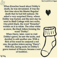 "~Dobby: When Kreacher heard about Dobby's  death, he was devastated. It was the  first time since his Master Regulus'  death that he had felt sadness. He  asked a very surprised Harry, where  Dobby was buried, and the next day he  went to Shell Cottage with two socks.  One pitch black, the word ""Kreacher""  written on it in white. The other white  as snow, the black letters forming the  word ""Dobby"".  When Harry, later, went to visit  Dobby's grave, he saw the socks, and  decided to add another one. With a  flick of his wand he conjured a red  one, the golden letters saying ""Harry"".  With this, laying socks on Dobby's  grave instead of flowers, became a sort  of tradition. ~Dobby"