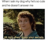 Cute, Answer, and Ask: When l ask my dog why he's so cute  and he doesn't answer me  All right then. Keep vour secrets.