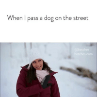 Bachelorette, Link, and Girl Memes: When l pass a dog on the street  etches  etches.com How's it goin? Our Bachelorette recap is up, link in bio or betches.co-bachelorette4