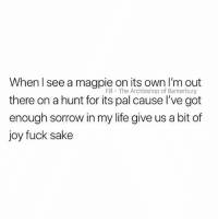 Life, Fuck, and British: When l see a magpie on its own I'm out  there on a hunt for its pal cause I've got  enough sorrow in my life give us a bit of  joy fuck sake  FB The Archbishop of Banterbury Pls😩