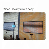 Party, Girl Memes, and Can: When l see my ex at a party Can he still see me? thenewqled
