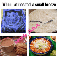 Latinos, Lol, and Memes: When Latinos feel a small breeze Lol yessssss Follow @puro_jajaja YaEraHora