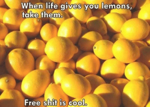Fake, Life, and Shit: When life aives vyou lemons,  fake hemm  Free shit is Gool
