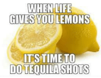 Harrisonkershaw: WHEN LIFE  GIVES YOU LEMONS  ITS TIME TO  DO TEQUILA SHOTS Harrisonkershaw