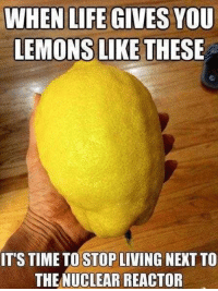 Time To Stop: WHEN LIFE GIVES YOU  LEMONS LIKE THESE  ITS TIME TO STOP LIVING NEXT TO  THE NUCLEAR REACTOR