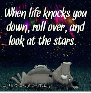 Life, Memes, and Stars: when life knocks you  down, roll over, and  look at the stars.  o.  allkin