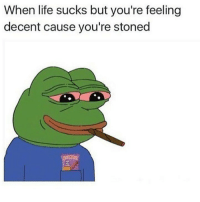 Life, Memes, and Good: When life sucks but you're feeling  decent cause you're stoned i went to go turn in my job application and go pick up I'm pretty good now 😋