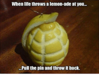 .: When life throws alemon-ade at you...  Pull the pin and throw it back. .