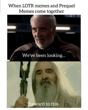 I'm later than Internet Explorer but...: When LOTR memes and Prequel  Memes come together  We've been looking..  forward to this. I'm later than Internet Explorer but...