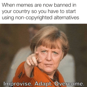 Memes, New Era, and Era: When memes are now banned in  your country so you have to start  using non-copyrighted alternatives  Improvise. Adapt. Overcome. NEW ERA EU MEMES