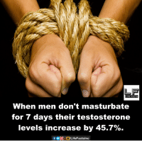 testosteron: When men don't masturbate  for 7 days their testosterone  levels increase by 45.7%.  f bogLifeFactslnc