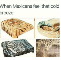 Follow us Mexican Problems: When Mexicans feel that cold  oreeze Follow us Mexican Problems