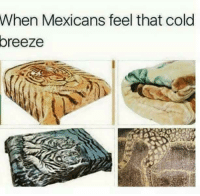Memes, Cold, and Mexican: When Mexicans feel that cold  oreeze #Mexicans be #like ➡ Mexican Problems
