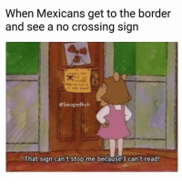 Memes, Lowkey, and 🤖: When Mexicans get to the border  and see a no crossing sign  @SavageeBruh  That sign can't stop me because I can't read! Chemistry lowkey easy. Algebra harder imo