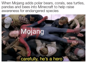 sea turtles: When Mojang adds polar bears, corals, sea turtles,  pandas and bees into Minecraft to help raise  awareness for endangered species  Mojang  carefully, he's a hero)