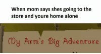 Being Alone, Home Alone, and Home: When mom says shes going to the  store and youre home alone  y Arm's Big Adventure  LTL stolen from @meet_n_yeet