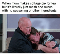 Dank Memes, Mash, and Tea: When mum makes cottage pie for tea  but it's literally just mash and mince  with no seasoning or other ingredients