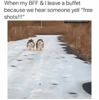 """Tbh, Free, and Girl Memes: When my BFF & I leave a buffet  because we hear someone yell """"free  shots!!!""""  IG CHOEGIVESNOFUCKS We're coming! Save us some! Tbh, there's mot much we wont do for free shots. You should hear what i did for a klondike bar..."""